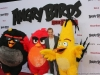 Angry Birds 13
