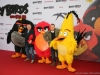 Angry Birds 23