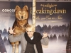 Premiere von Twilight: Breaking Dawn Teil 2